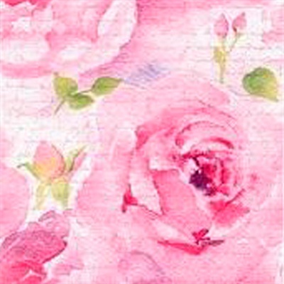 Rosa Delicada Pink Lunch Napkin 12/20 CS (340221)