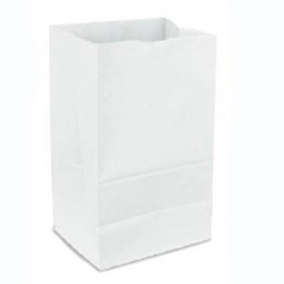 White Paper Bag 8 lb 500 Bundle Duro